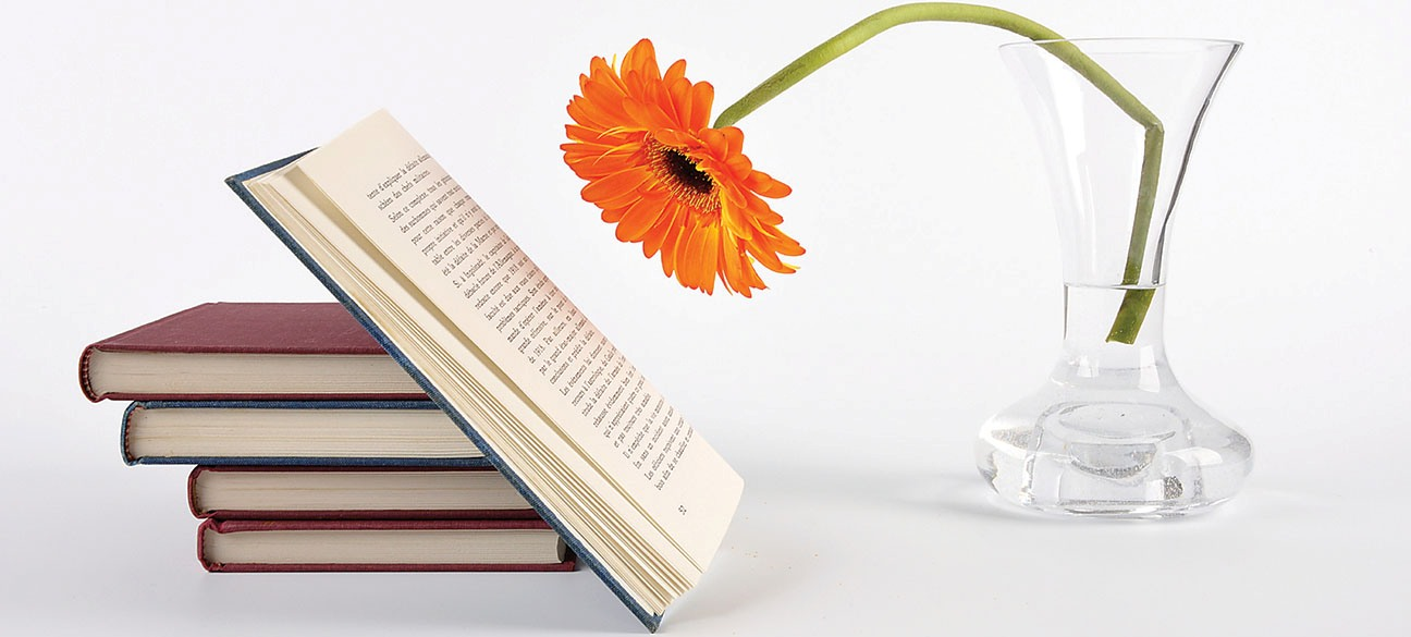 spring_reading - копия